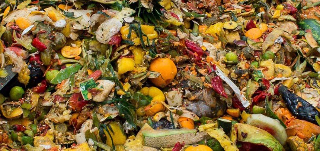 Reduce-Food-waste-1060